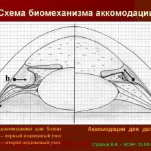 Страхов В.В. Аккомодация. ЭСАР, SABAR, 2009г, www.organum-visus.com